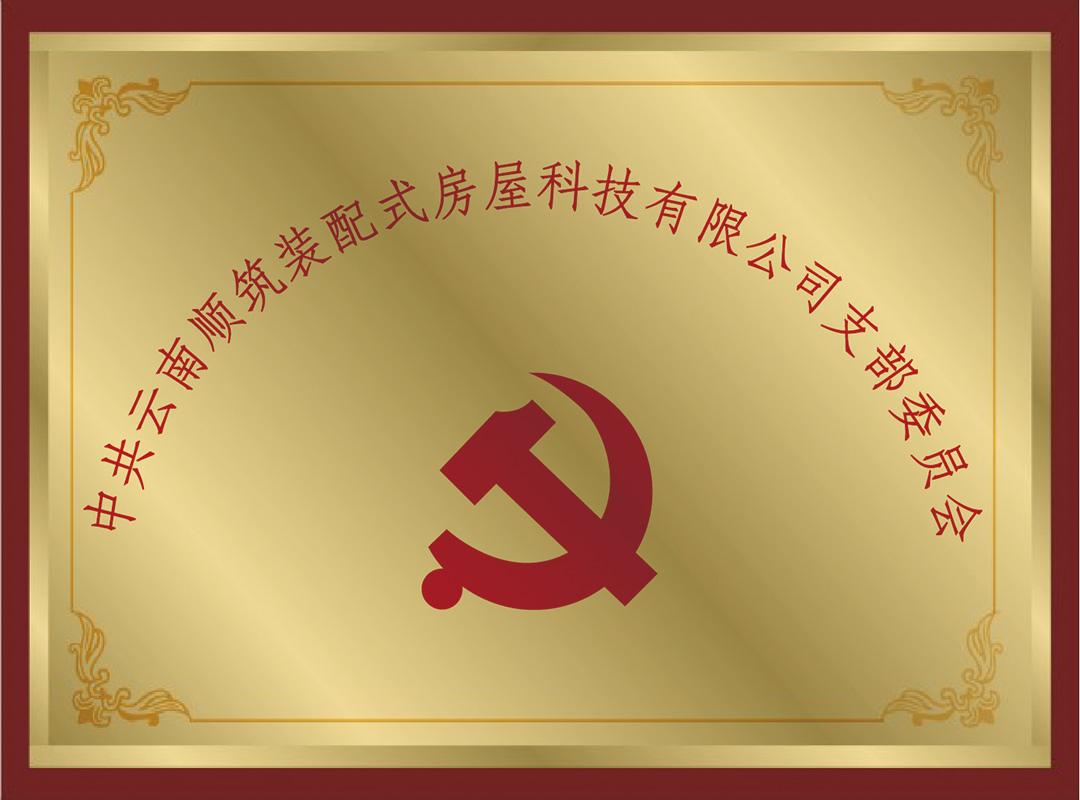 云南顺筑党支部委员会